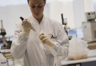 AINIA investiga la aplicación de bacteriófagos como sustitutivos de antibióticos
