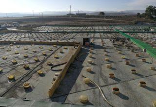 Desarrollan una nueva solución para aumentar la sostenibilidad en el proceso de producción de aceitunas de mesa